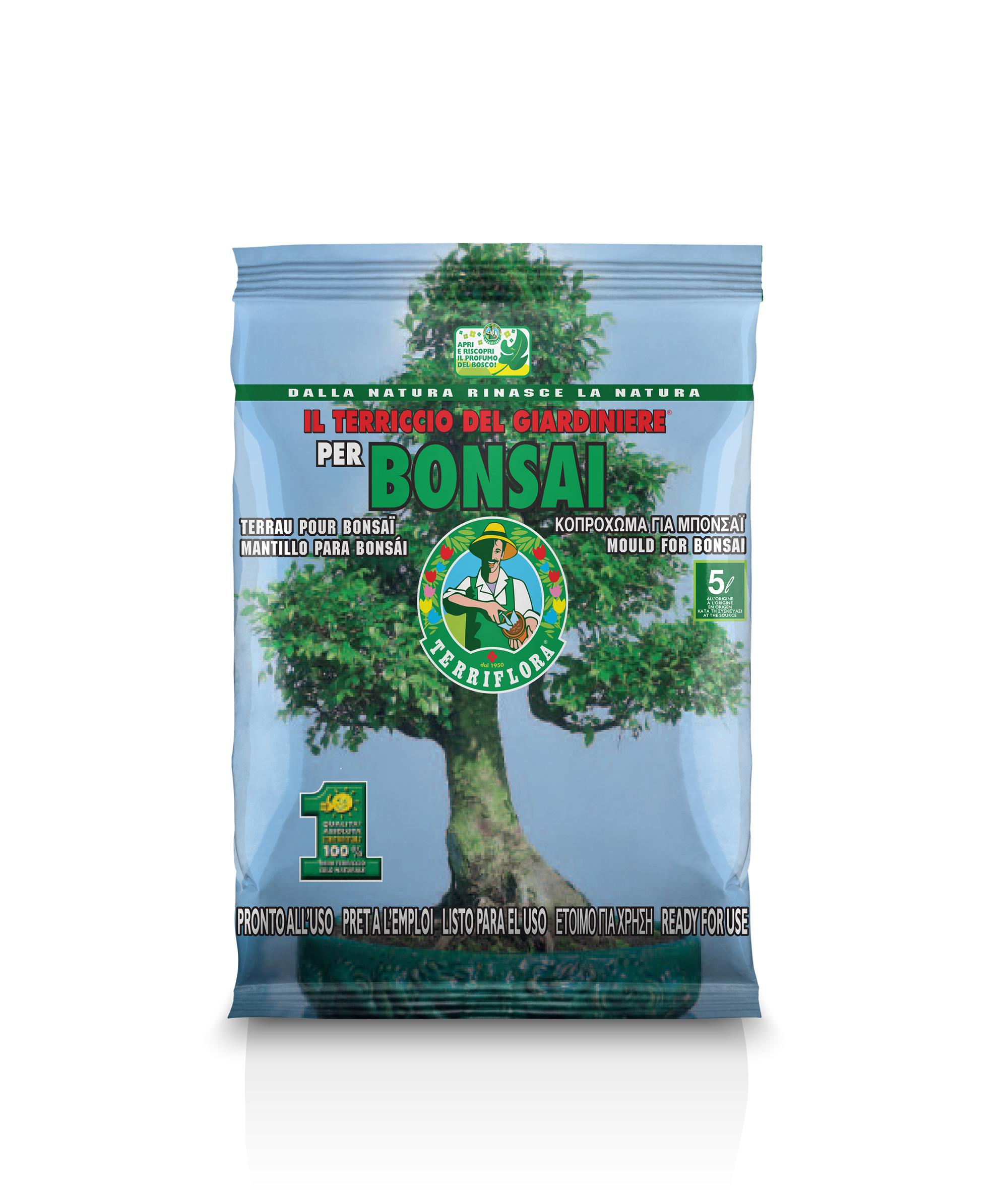 Terriccio specifico per Bonsai